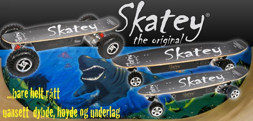 Skatey - elektriske skateboard